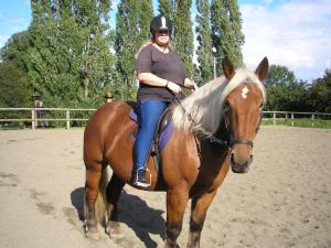 Julie with her Comtois in Bitless Bridle