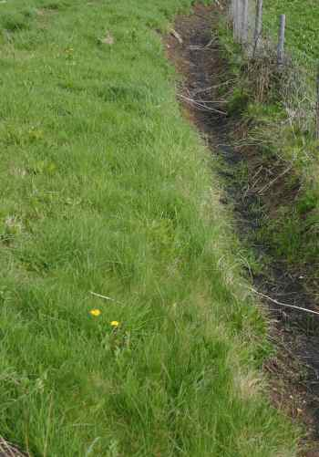 a typical field drainage ditch